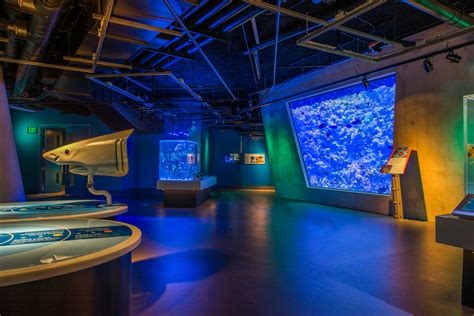 The Phillip and Patricia Frost Museum of Science   Miami